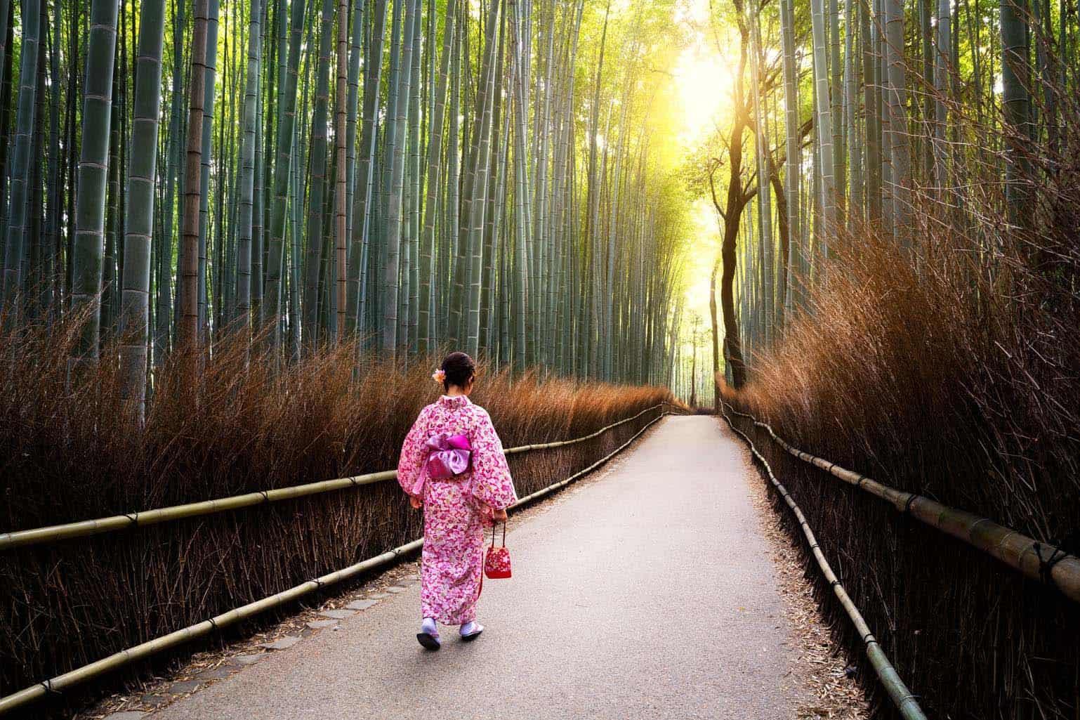 Kyoto Sagano Bamboo Grove