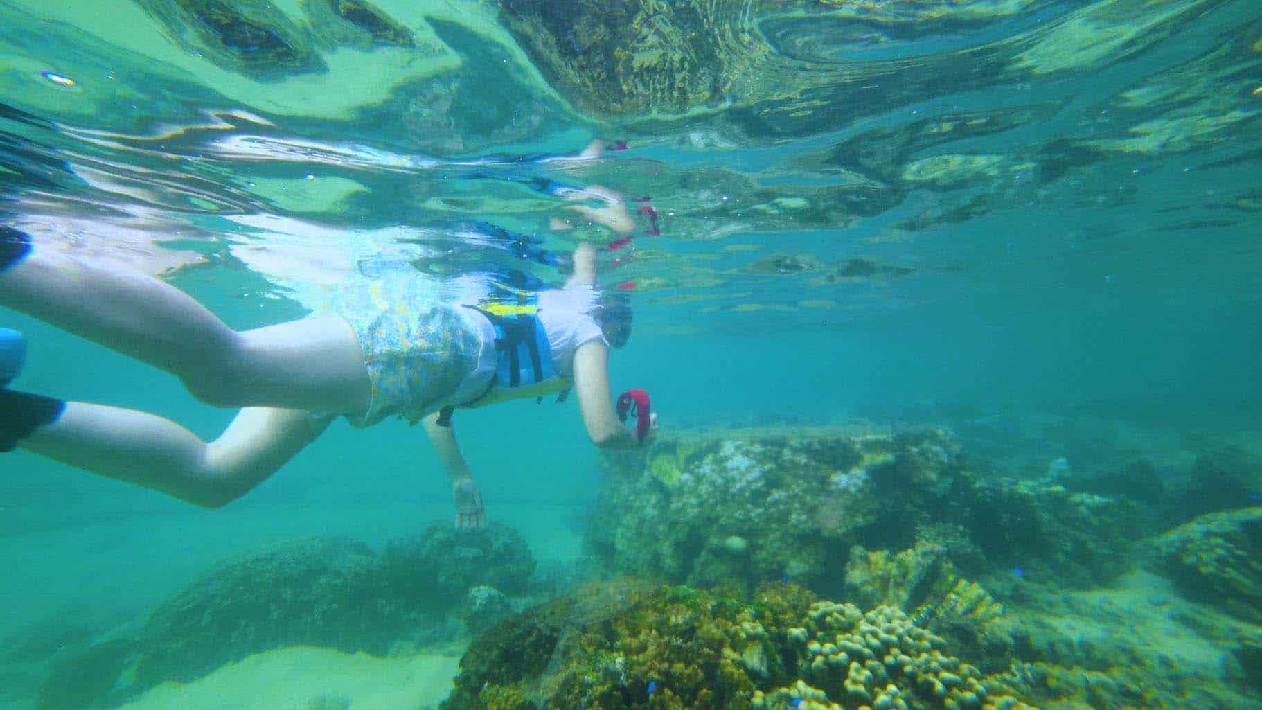 Kerama Island Snorkelling Escape