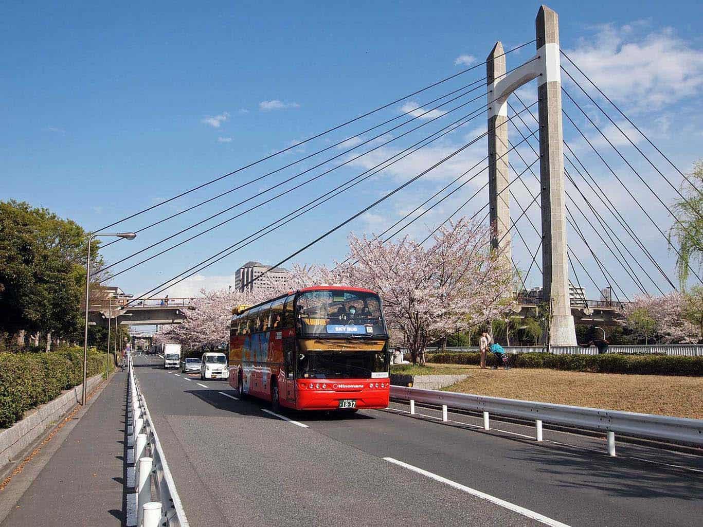 Tokyo - Hop On, Hop Off Bus