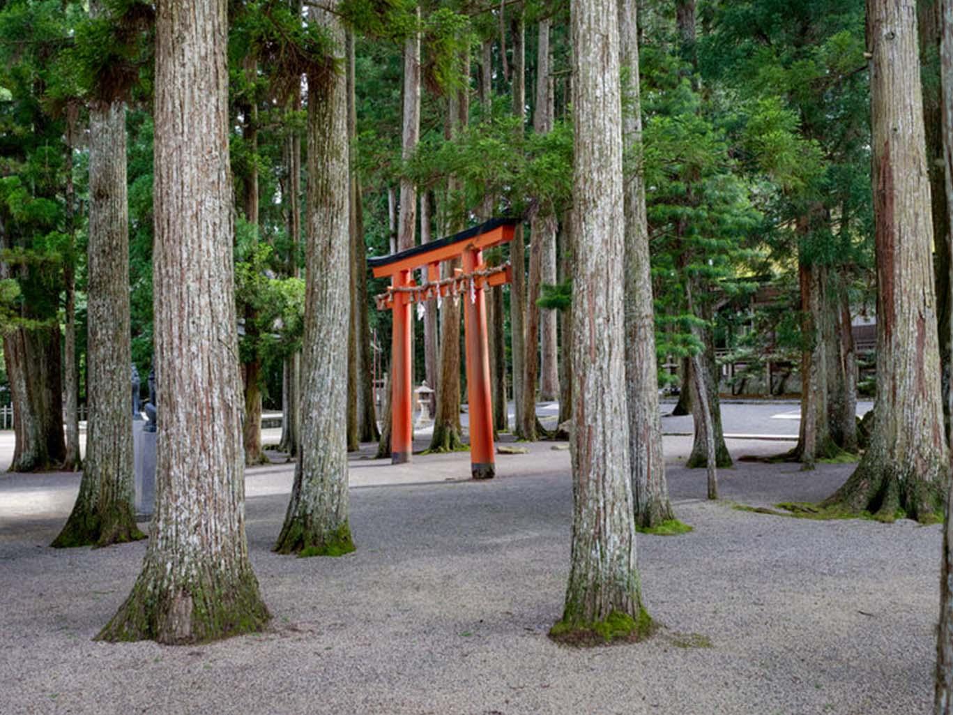Koyosan Sacred Site