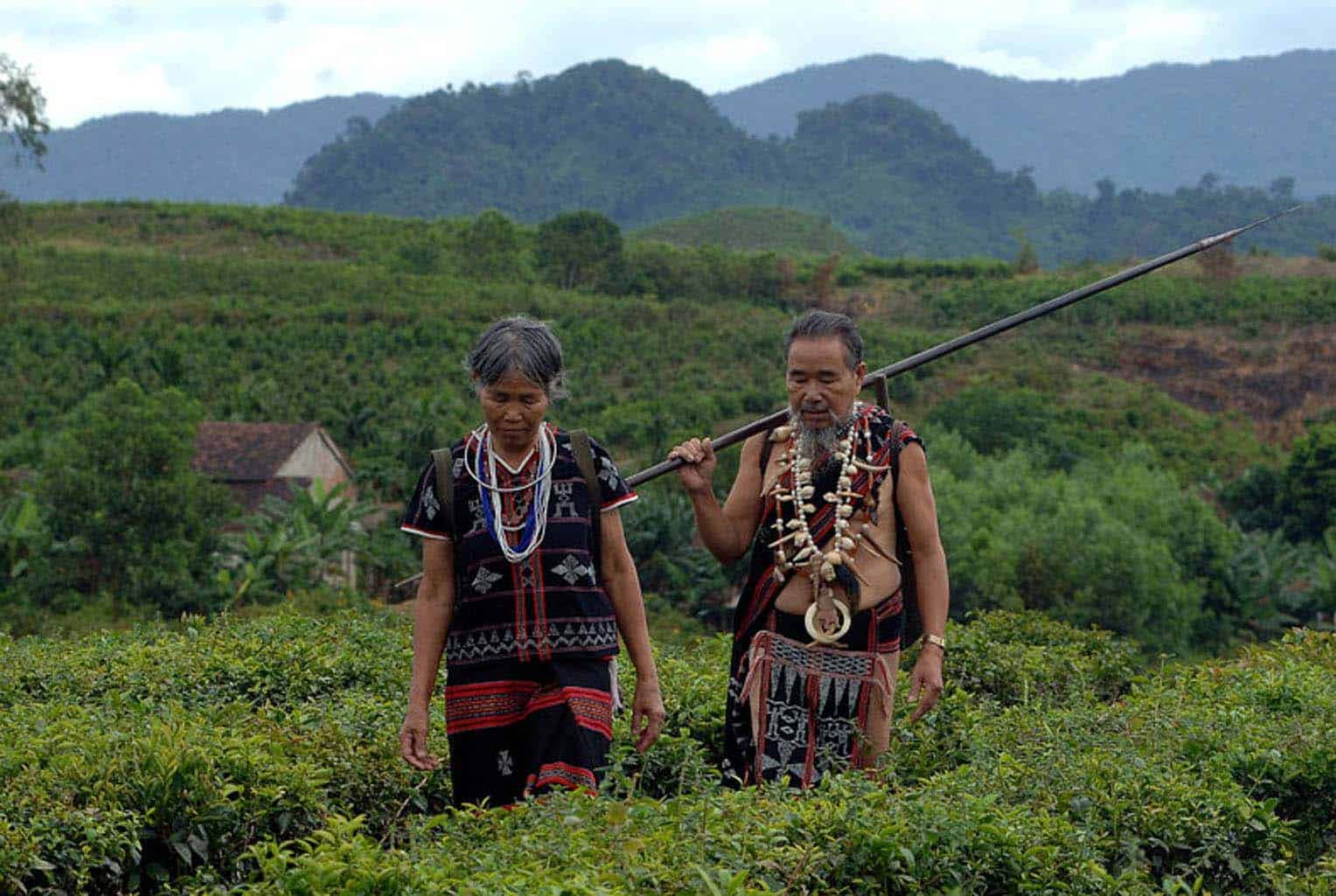 Ethnic Community Experience