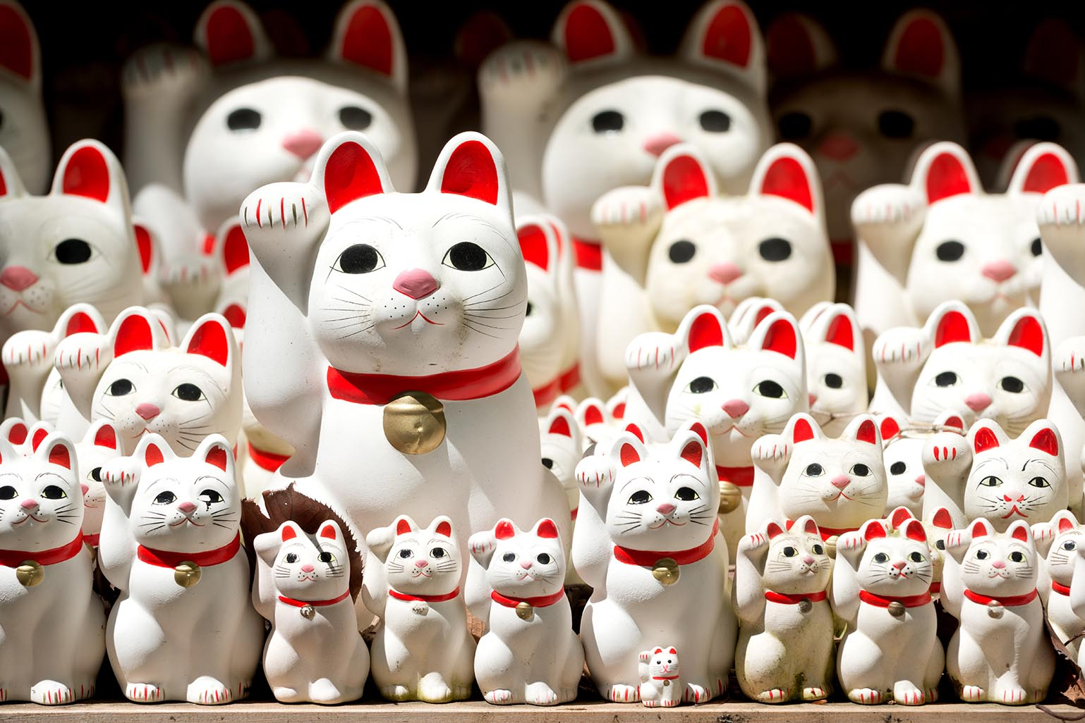 Gotokuji Lucky Cats Walking Tour