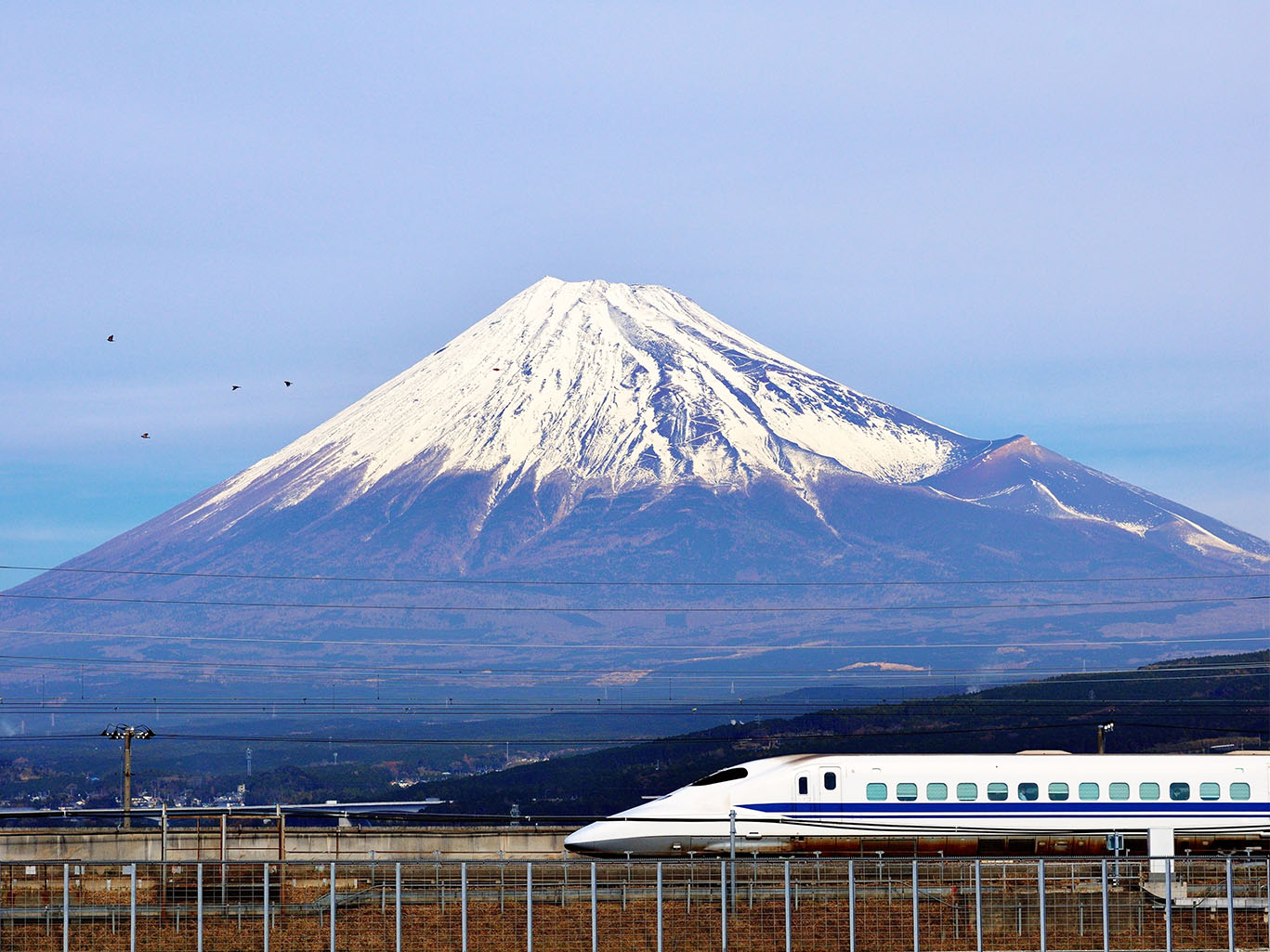 A Glimpse of Japan