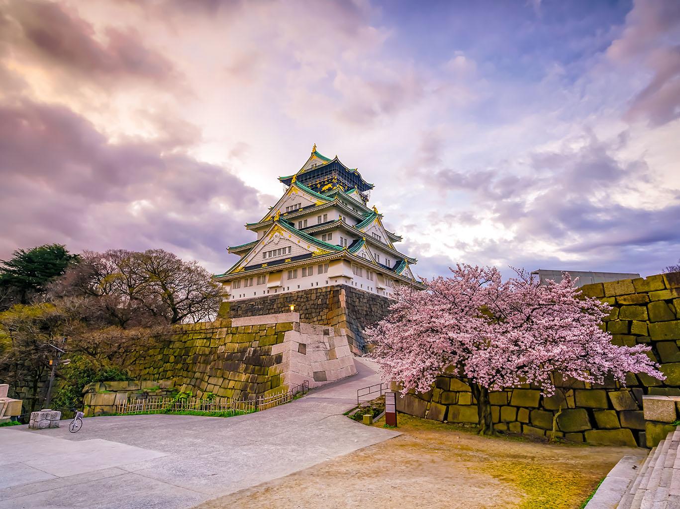 Japan Fortnight